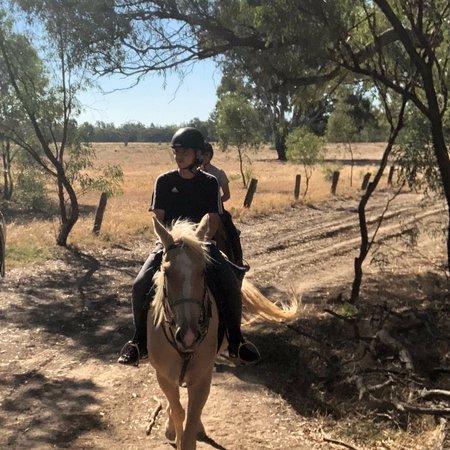 Billabong Ranch: photo1.jpg