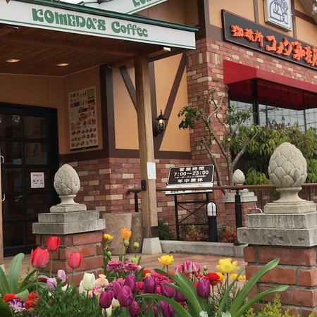 花壇と店舗