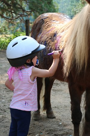 Trinity Center, CA: Pony painting for the kids