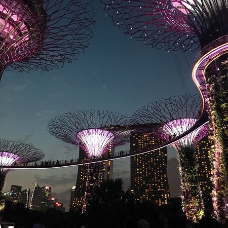 The best part of Singapore!