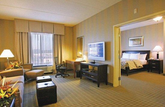 Hilton Garden Inn Springfield: Suite