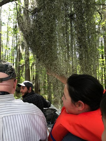Plaquemine, Луизиана: Traveling through Spanish Moss.