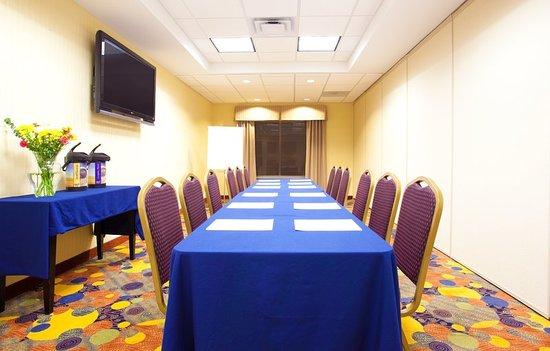 هوليداي إن إكسبريس آند سويتس وكيجان: Meeting room