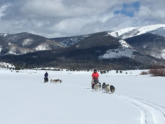 Clark, CO: Two teams on the Steamboat Lake Trail