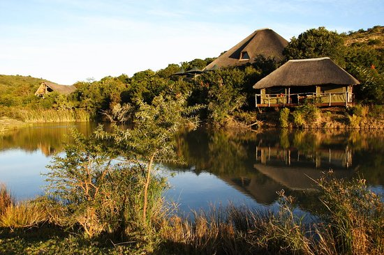 Shamwari Game Reserve Lodges: Spa