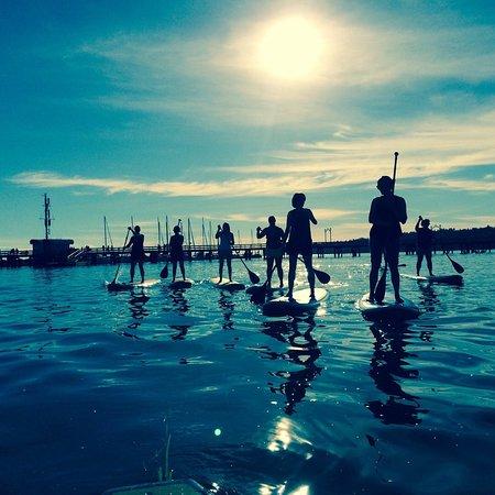 Feral Boardsports: Evening paddle