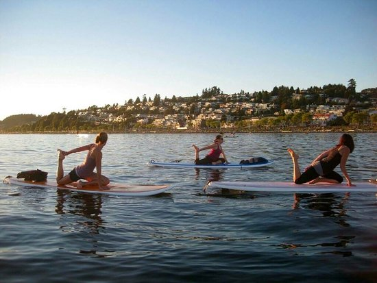 Feral Boardsports: SUP Yoga