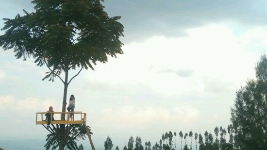 Temanggung, Indonesien: Spot Nongkrong Alam Sewu