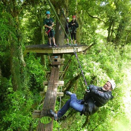 Rotorua Canopy Tours: photo3.jpg