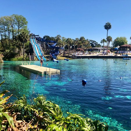 Weeki Wachee Springs 2019 All You Need To Know Before