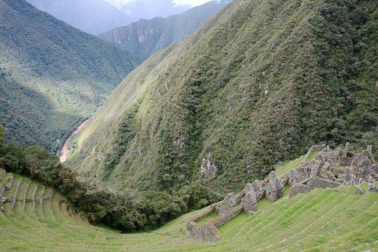 At the top of Winay Wayna