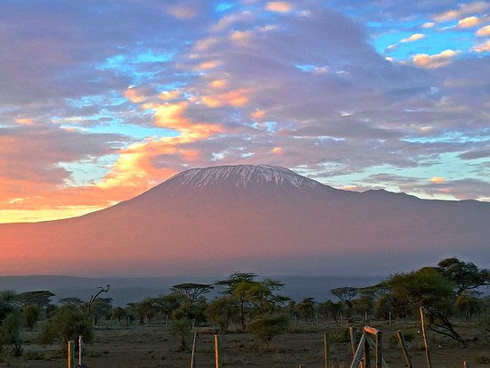 Safari Kenya Magique