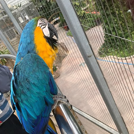 Gyeongju Bird Park: photo3.jpg