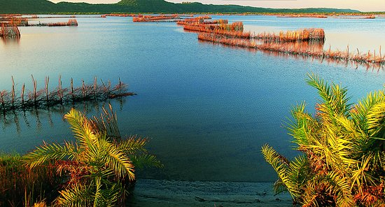 Maputaland Coastal Forest Reserve, África do Sul: Join us on a boat trip on the  Kosi Lakes showing the fishing trap..