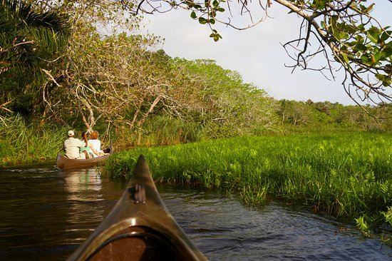 Maputaland Coastal Forest Reserve, África do Sul: Guided Kayaking