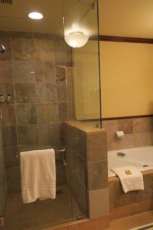 1BR suite - bathroom