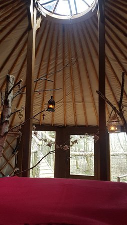 Northumberland National Park, UK: Houlet treehouse