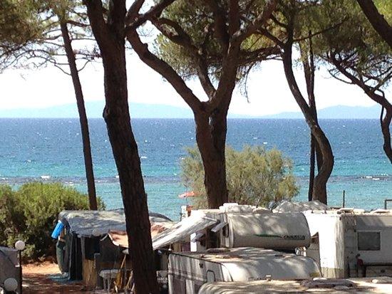 Campeggio Pineta del Golfo (Follonica, Italy) - Campground Reviews ...