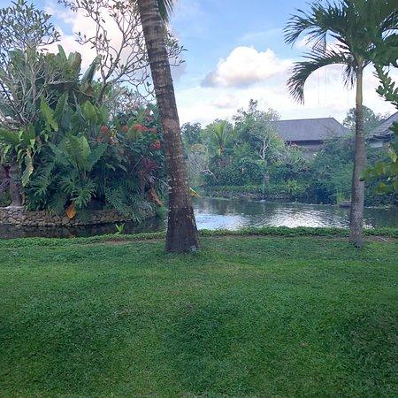 Beautiful Resort!