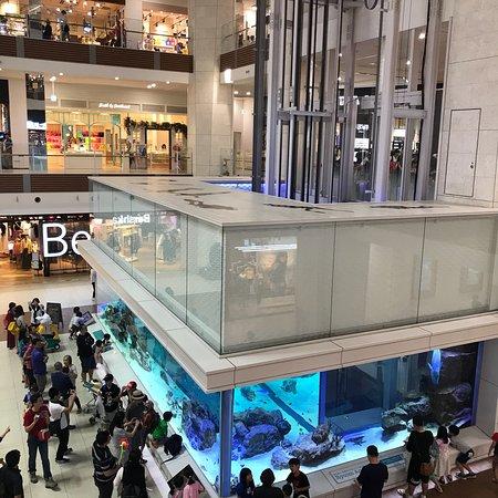 Aeon Mall Okinawa Rycom: photo4.jpg