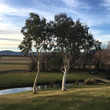 Bothwell, Australia: Many Distillery is set on beautiful grounds and caters for the discerning whiskey enthusiast