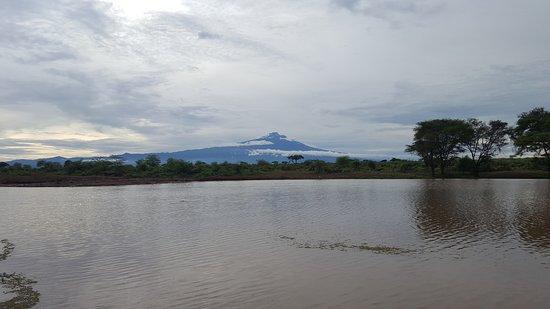 旅行者錫瓦尼帳篷營地照片
