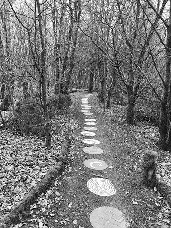 Cwmduad, UK: Trail
