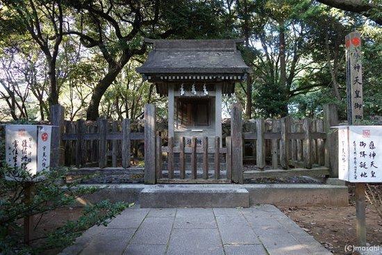 Umi Park