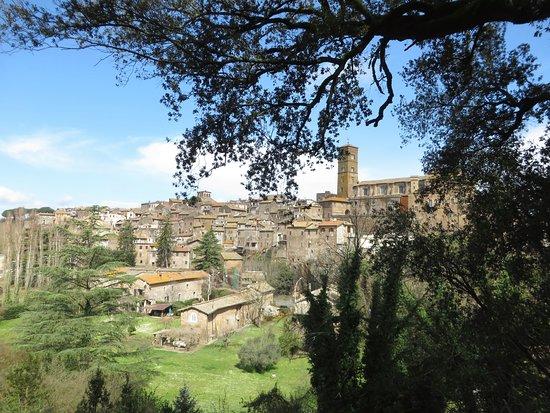 Villa Savorelli: panorama sul centro storico dal parco