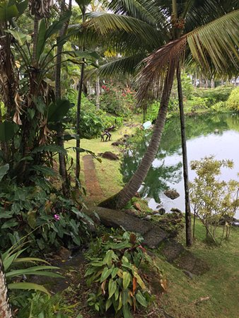 Na Aina Kai Botanical Gardens: One of the picturesque scenes. Can you spot the two native American fisherman?