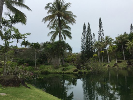 Na Aina Kai Botanical Gardens: One of the man ponds.