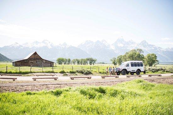 Yellowstone Hot Spring Picture Of Scenic Safaris Jackson Tripadvisor