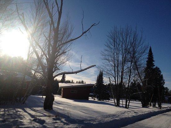 Rhinelander, WI: Dusk in winter...#20 Windsong is a two bedroom cottage. Come snowshoe, xc ski or fat bike!