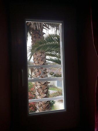 Le Clos de la Palmeraie : Vue par la fenêtre ( petite) de la chambre chinoise