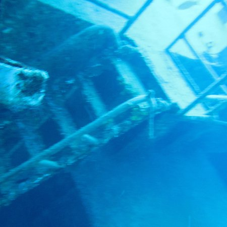 Kittiwake Shipwreck & Artificial Reef : photo2.jpg