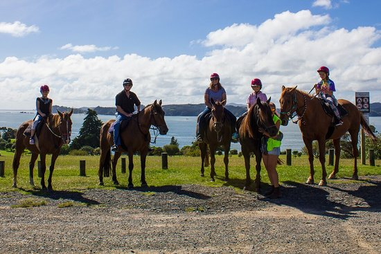 Paihia, Nuova Zelanda: A family group enjoying the Bayview Scenic ride - great for kids!