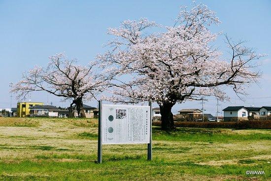 Hitachikokubunni-ji Temple Ruins