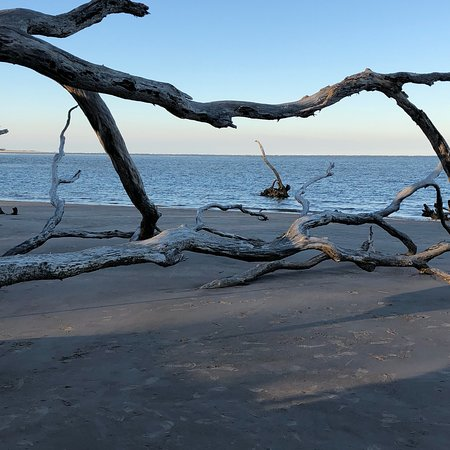 Big Talbot Island State Park : photo0.jpg