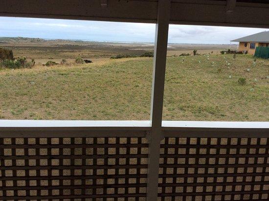 Koroit, Australia: View from front verandah