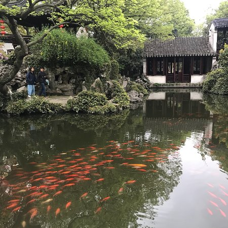 Private Suzhou and Zhouzhuang or Tongli Tour from Shanghai Photo