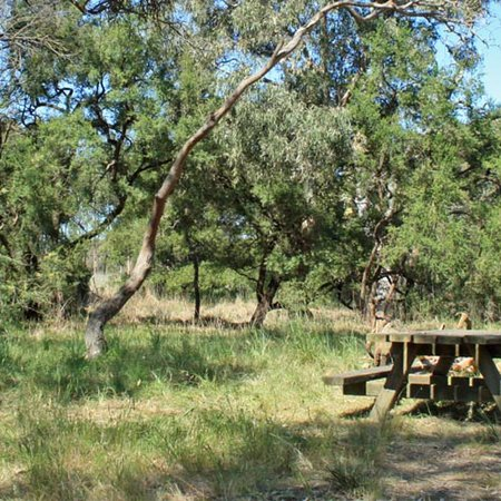 Stewart Reserve