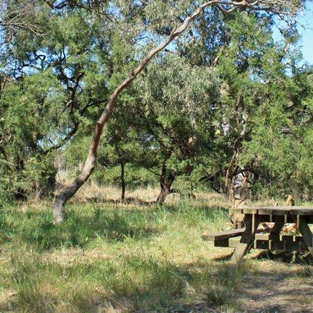 Waurn Ponds, Australia: Stewart Reserve