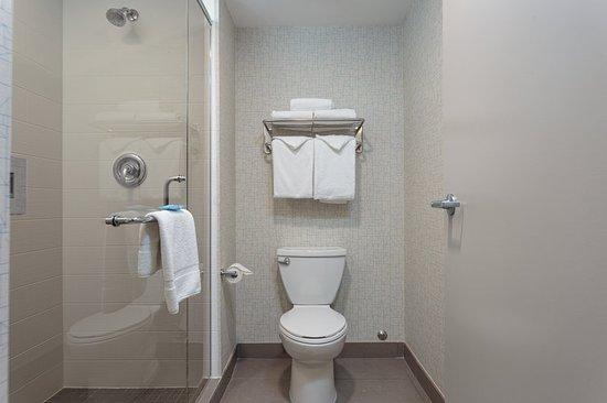 Holiday Inn Express Hotel & Suites Belleville: Guest room