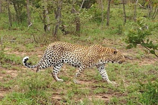 Around Zimbabwe 12 Days Mobile Safaris