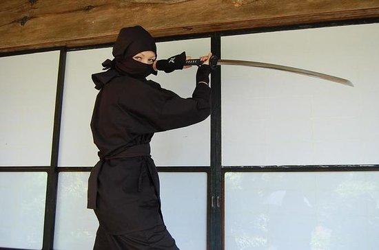 Ninja Experience in Hinode-machi...