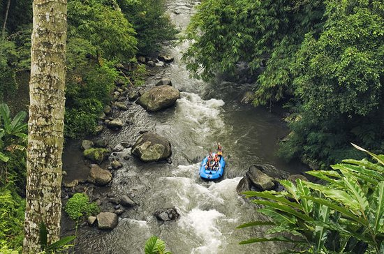 Ayung River Rafting in Ubud including...