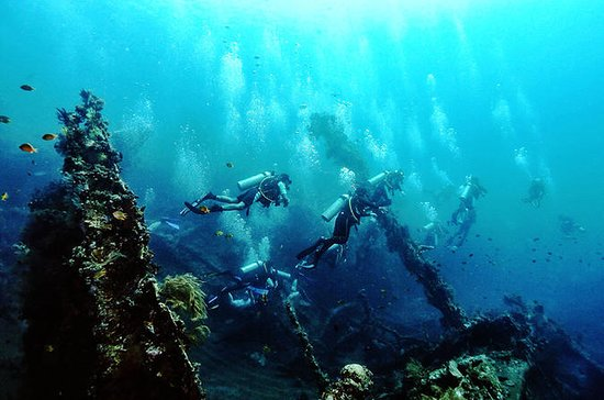 Diving Tulamben & The Charm of...