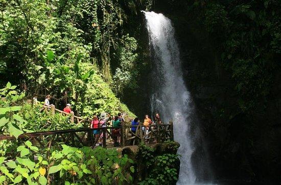 Jardins da cachoeira de La Paz &amp...