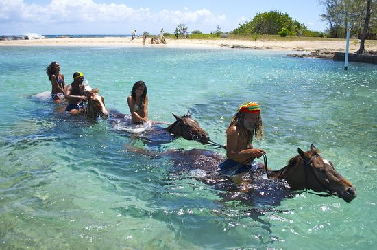 Jamaica Zipline and Horseback Ride n ...