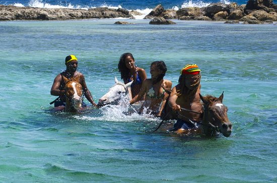 Horseback Ride and Swim Adventure ...
